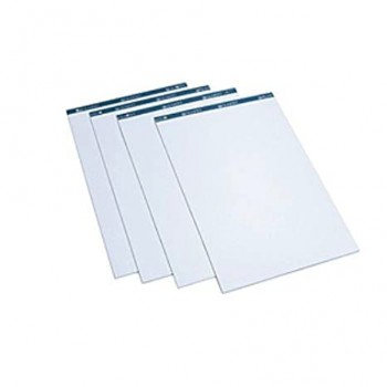 Flip Chart Pad 2'' x 3'' - 25pcs/set